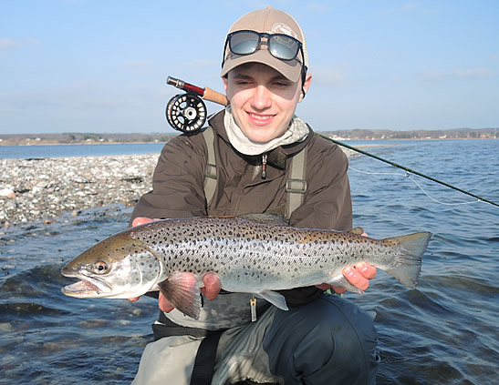 Sea trout fishing at our lodge. Omar Gade fishing guide holding a nice brown sea trout from Fyn